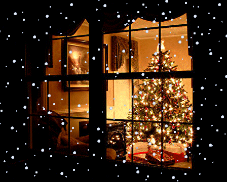 The home guru why the holidays can be the best time to for Best looking christmas tree
