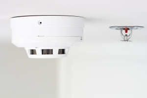 44378168 - smoke detector and pendent fire sprinkler on a ceiling